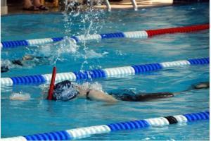Žďarský gumák  v ploutvovém plavání má za sebou druhý ročník