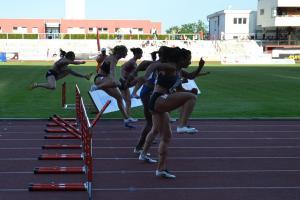 Ministerská podpora pro sportovní svazy částkou 1 271 398 000 korun...